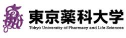 東京薬科大学(中国)